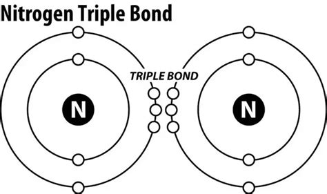 how many bonds can phosphorus form why does nitrogen form three bonds quora