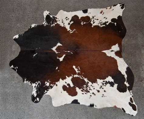 cowhide rugs nz 46 best images about cowhide rugs on
