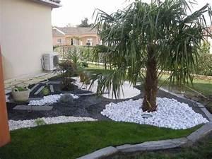 Palmier De Jardin : mignon jardin avec palmier information ~ Nature-et-papiers.com Idées de Décoration
