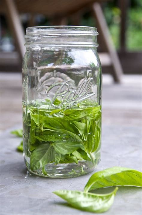 basil preserve ways way herbs fresh dry preserving garden most drying thekitchn herb leaves freeze freezing collect canning convenient gardening