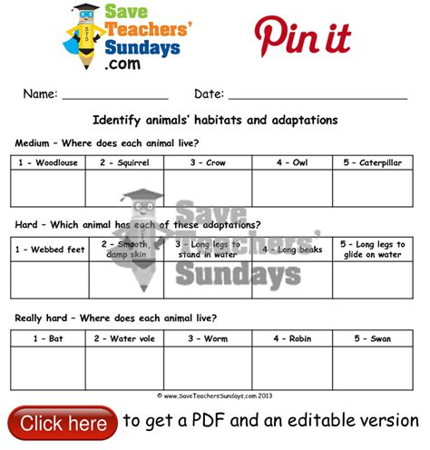 online activities on animals and their habitats worksheet