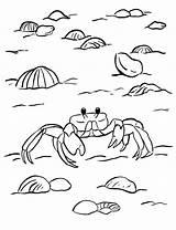 Crab Coloring Ghost Printable Sea Horseshoe Samanthasbell Getcolorings Coloringbay Week Reference sketch template