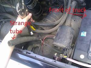 1987 F150  5 0l 302 V8  Two Problems