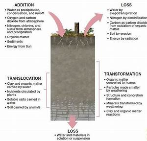 Soil Profile Upsc