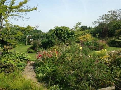 Bluebell Cottage Gardens (dutton, England) Top Tips