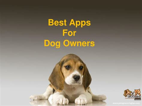 best for owners ppt best apps for dog owners powerpoint presentation id 7395229