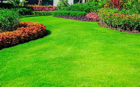 front yard landscaping ideas  home depot