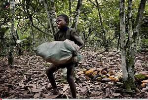 Big Chocolate's Child Slavery Addiction - Democratic ...