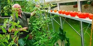 Abri A Tomate : jardin d 39 hubert ~ Premium-room.com Idées de Décoration