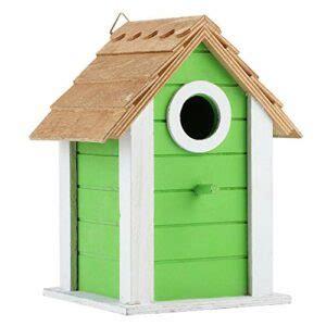 crisis kit de nichoir pour oiseaux nichoirs en bois sains
