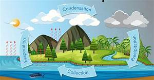 What Is The Water Cycle   U2022 Earth Com