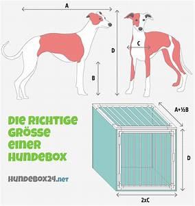 Hundebox Grösse Berechnen : die richtige gr e einer hundebox hundebox24 ~ Themetempest.com Abrechnung