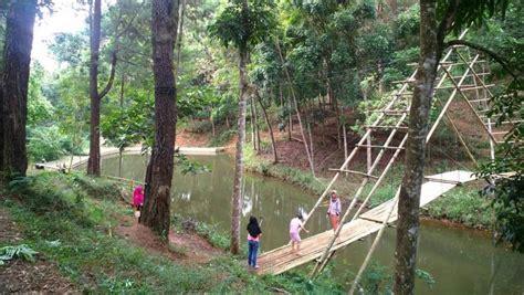 Tempat wisata pasuruan agrowisata bhakti alam menawarkan kesejukan di alam terbuka dan teduhnya tanaman tropis. Hutan Lindung Jampang Tengah Tempat Mengisi Liburan Keluarga - Destinasi Travel Indonesia