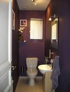 Deco Wc Gris : deco wc gris et violet ~ Melissatoandfro.com Idées de Décoration