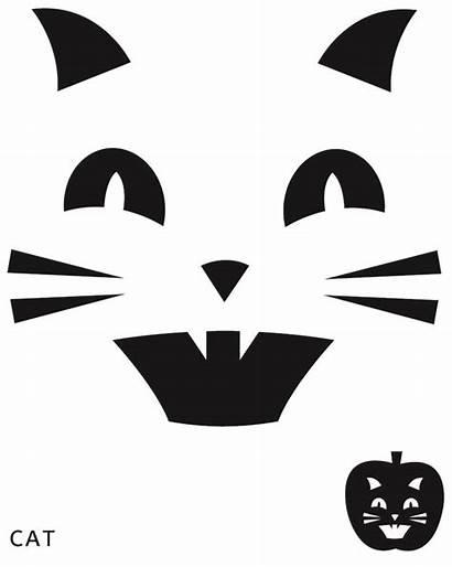Pumpkin Cat Carving Printable Stencils Template Stencil