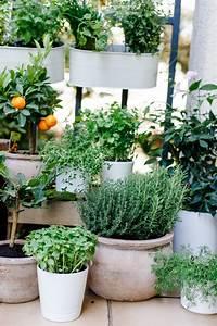 Ameisen Auf Der Terrasse : unsere terrasse vorher nachher tipps f r die ~ Lizthompson.info Haus und Dekorationen