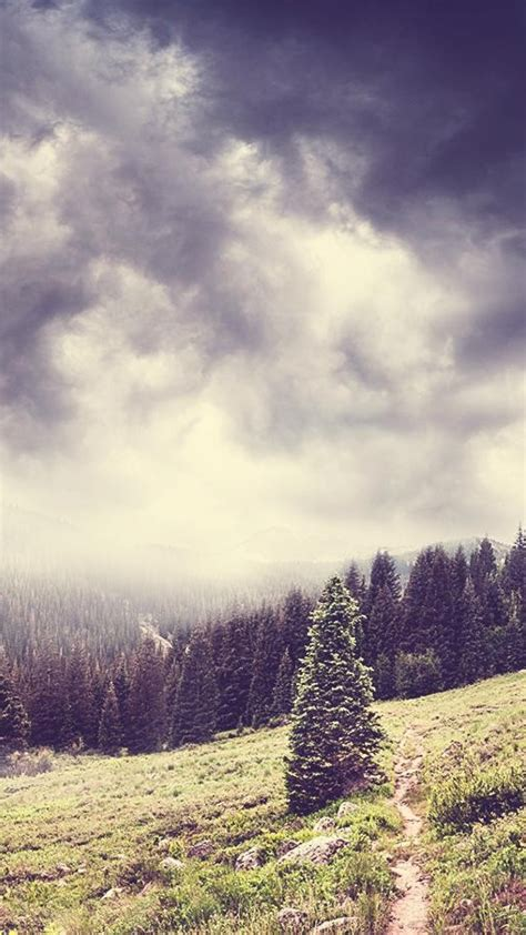 dark clouds  forest nature mountains iphone wallpaper
