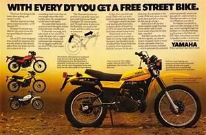 Dt250  1979