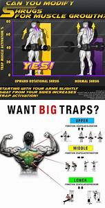How To Shrugs For Muscle Growth Traps