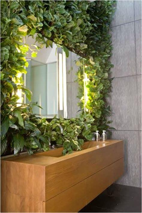 25 best ideas about bathroom plants on pinterest plants