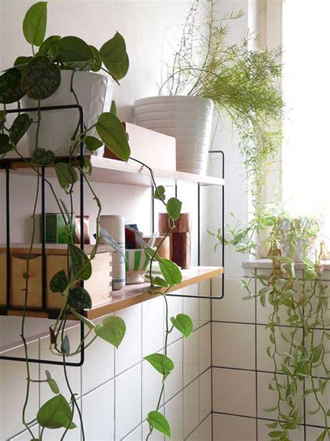 plantes salle de bain des plantes vertes dans la salle de bain frenchy fancy