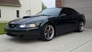 2001 Mustang GT Bullitt #5381 FOR SALE | SVTPerformance.com