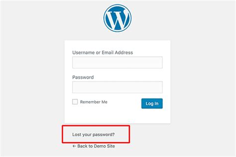 Forgot Your Password? How To Recover A Lost Password In