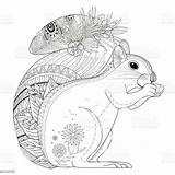 Squirrel Coloring Zentangle Adorable Illustration Cartoon Vector Printable Exquisite Line Getcolorings Categories sketch template