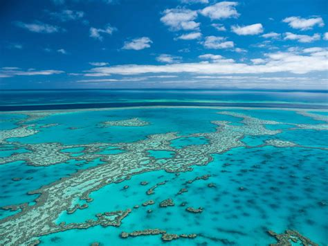 Learn about the Great Barrier Reef - Superyacht Great Barrier Reef