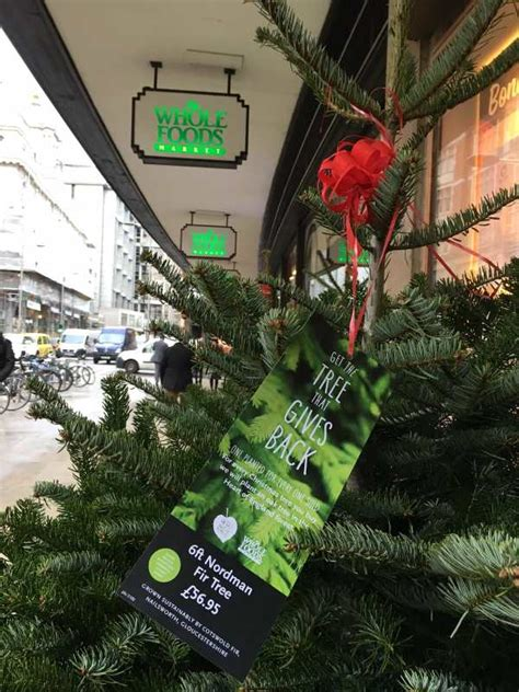 gallery of whole foods christmas trees fabulous homes