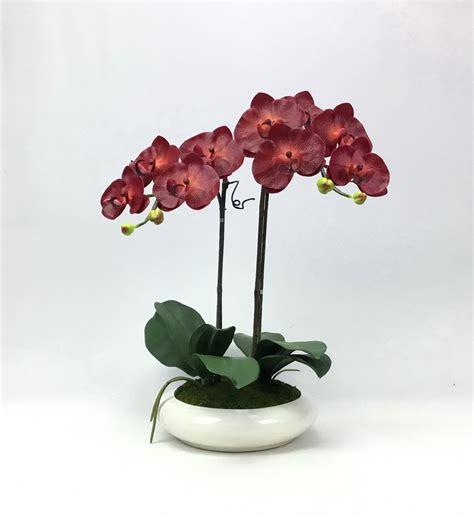 ดอกกล้วยไม้ปลอม phalaenopsis orchid plant pot arrangement