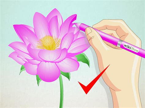 draw  lotus flower  steps  pictures wikihow
