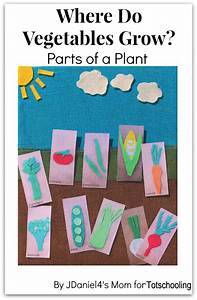 Where do Vegetables Grow? Gardening Craft with Free ...