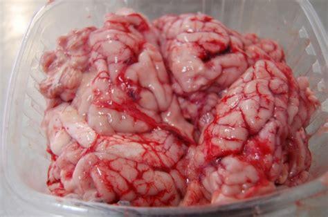 cuisiner de la cervelle de porc cervelle de porc porc ferm 278 cervelle de porc