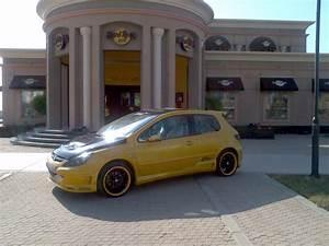 Peugeot Somain : black22suger 2003 peugeot 307 specs photos modification info at cardomain ~ Gottalentnigeria.com Avis de Voitures