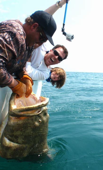 grouper goliath navigation