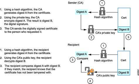 understanding certificates  pki technical