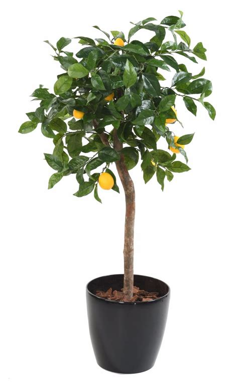 arbre artificiel fruitier citronnier t 234 te en pot