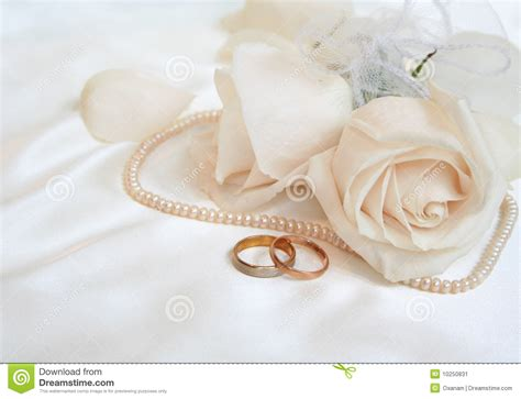 wedding rings and roses stock image image of love rose