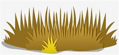 Clipart Grass Dead Dry Transparent