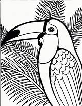 Coloring Pages Peacock Printable Printables Bird Pen sketch template