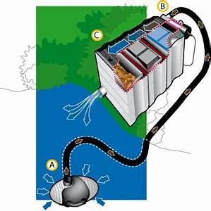 Filtre Bassin Exterieur : materiel et accessoires pour bassin de jardin naturel ~ Melissatoandfro.com Idées de Décoration