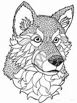 Coloring Wolf Adults Adult Mycoloring Wolves Printable Teens sketch template