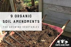 9 Organic Soil Amendments for Growing Vegetables | Tenth ...