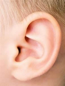 Auditory Brainstem Implant  Hearing Experts Break Sound