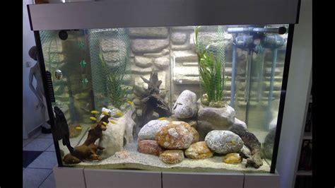 aquarium einrichten  liter fuer malawi buntbarsche und