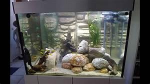 Aquarium Gestaltung Bilder : aquarium einrichten 500 liter f r malawi buntbarsche und ~ Lizthompson.info Haus und Dekorationen