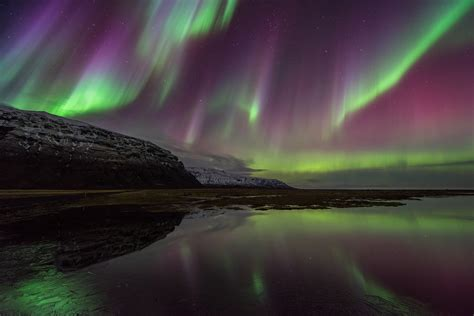 northern lights in iceland northern lights boat tour guide to iceland