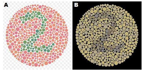 color blindness definition what is color blindness causes overview study