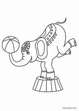 Circus Coloring Pages Elephant sketch template